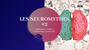 Neurosciences | Faire tomber les neuro mythes : Cerveau droit & cerveau gauche | EPISODE 2