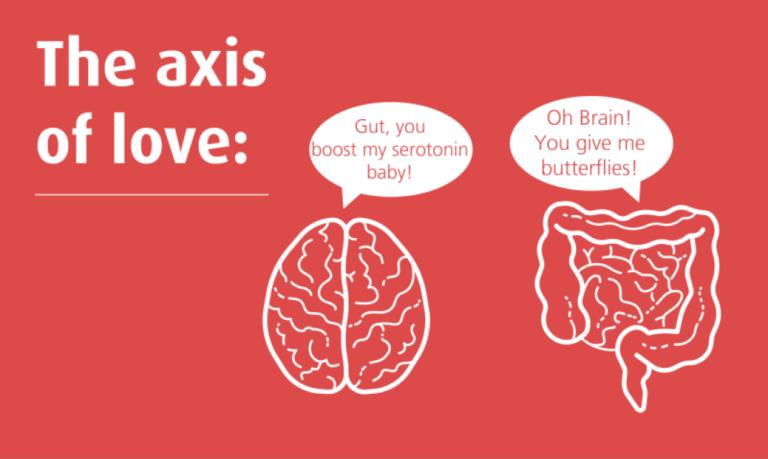 Ventre & Cerveau l Exploration d'une relation passionnelle