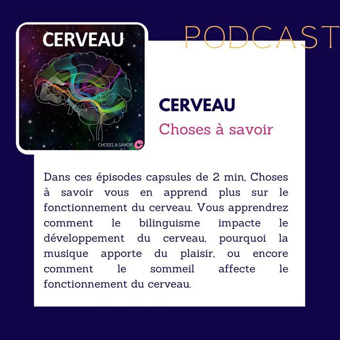 Podcast Cerveau, Choses à savoir